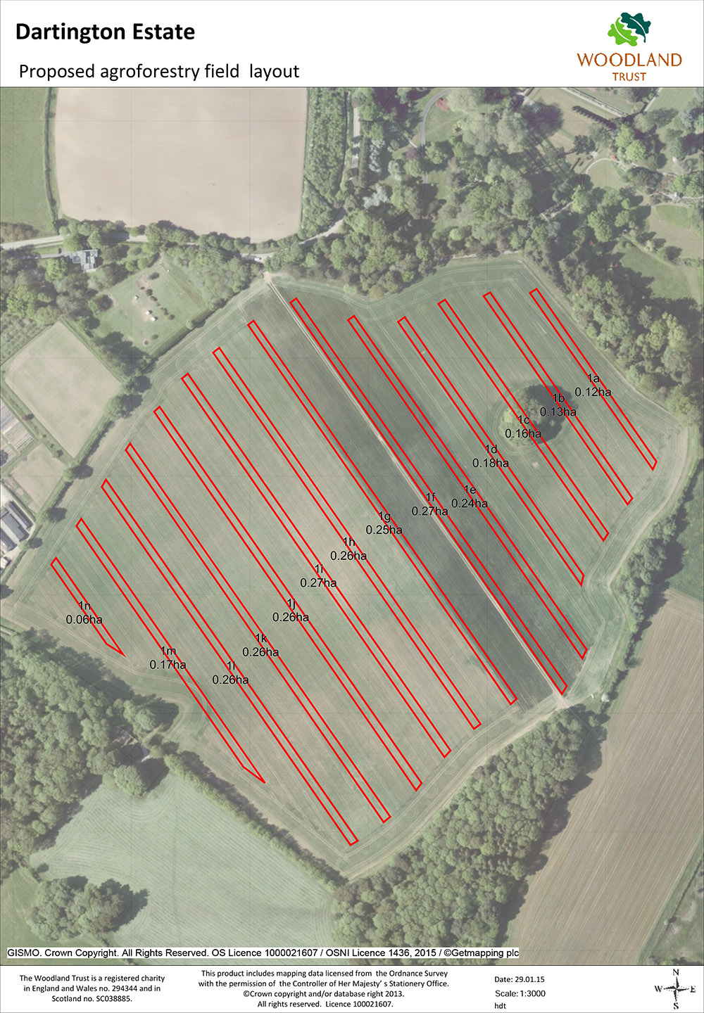 Agroforestry field proposed layout
