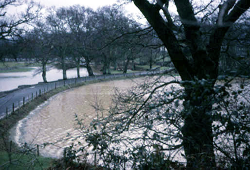 Edge of Queen's Marsh, Dartington in flood, captured by Leonard Elmhirst on 30 Feb 1967