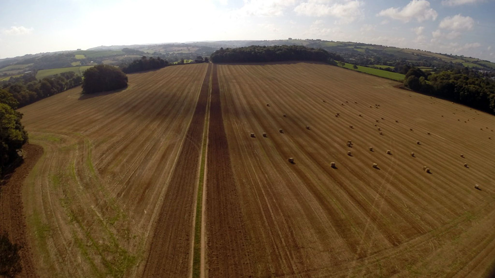 The field at Dartington proposed for agroforestry use
