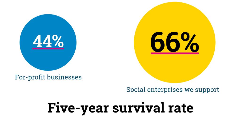 SSE Dartington - Survival rate