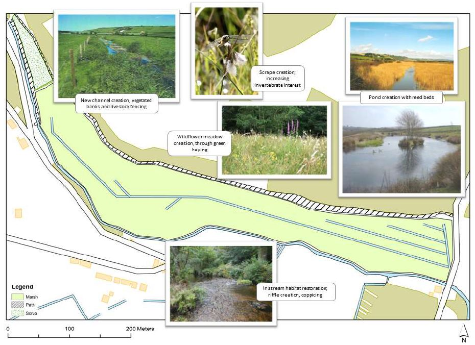 Map showing biodiversity and ecology improvement opportunities within Queen's Marsh.