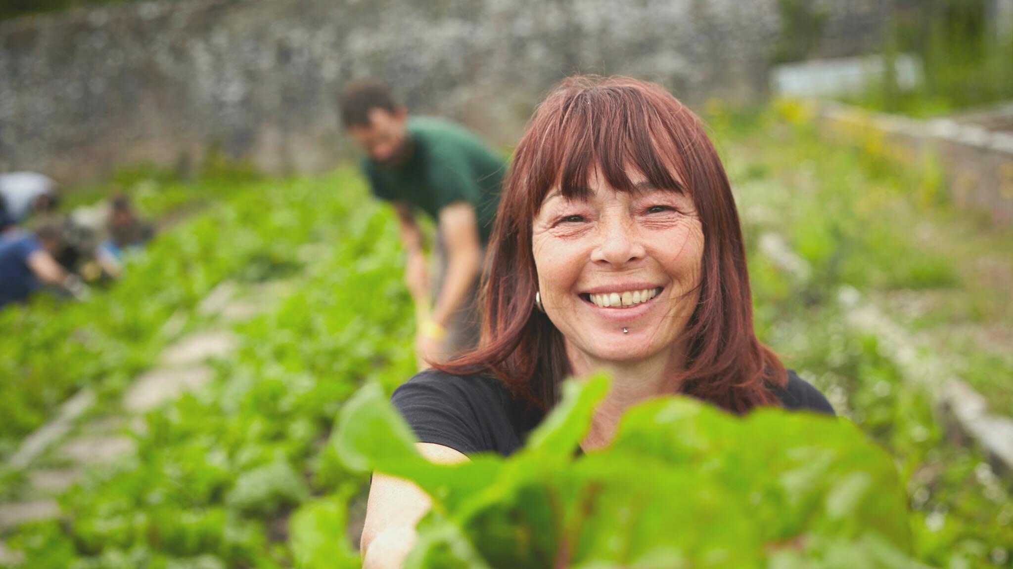 Sarah Coates Walled Garden