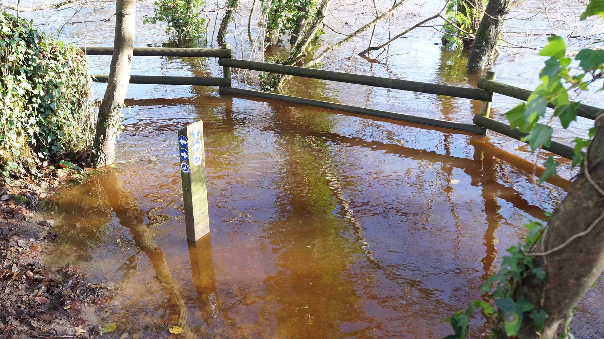 River Dart in flood. Which way now?